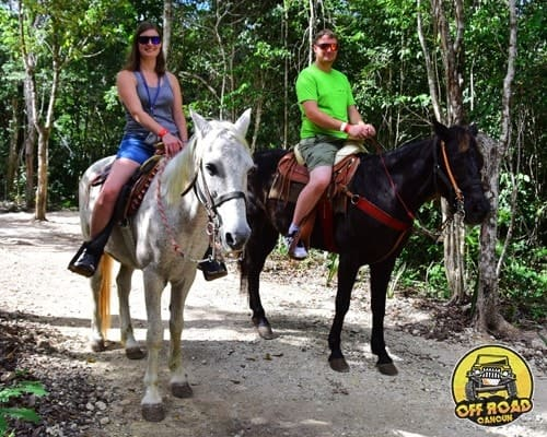 caballos_movil